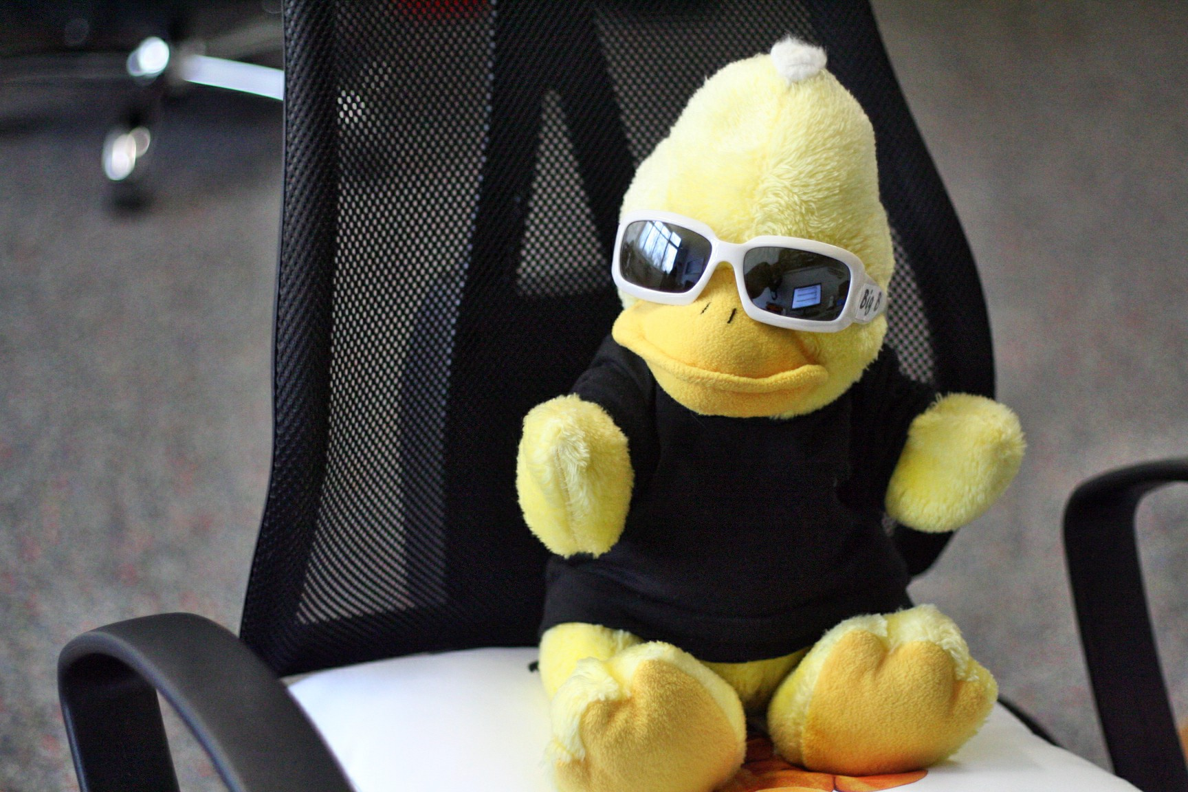 Bereits seit 2013 ist BigB das Motiv zahlreicher Accessoires, die im eigenen Onlineshop vertrieben werden. Nun legt der gelbe Erpel aus Beckum eine kreative Winterpause ein.