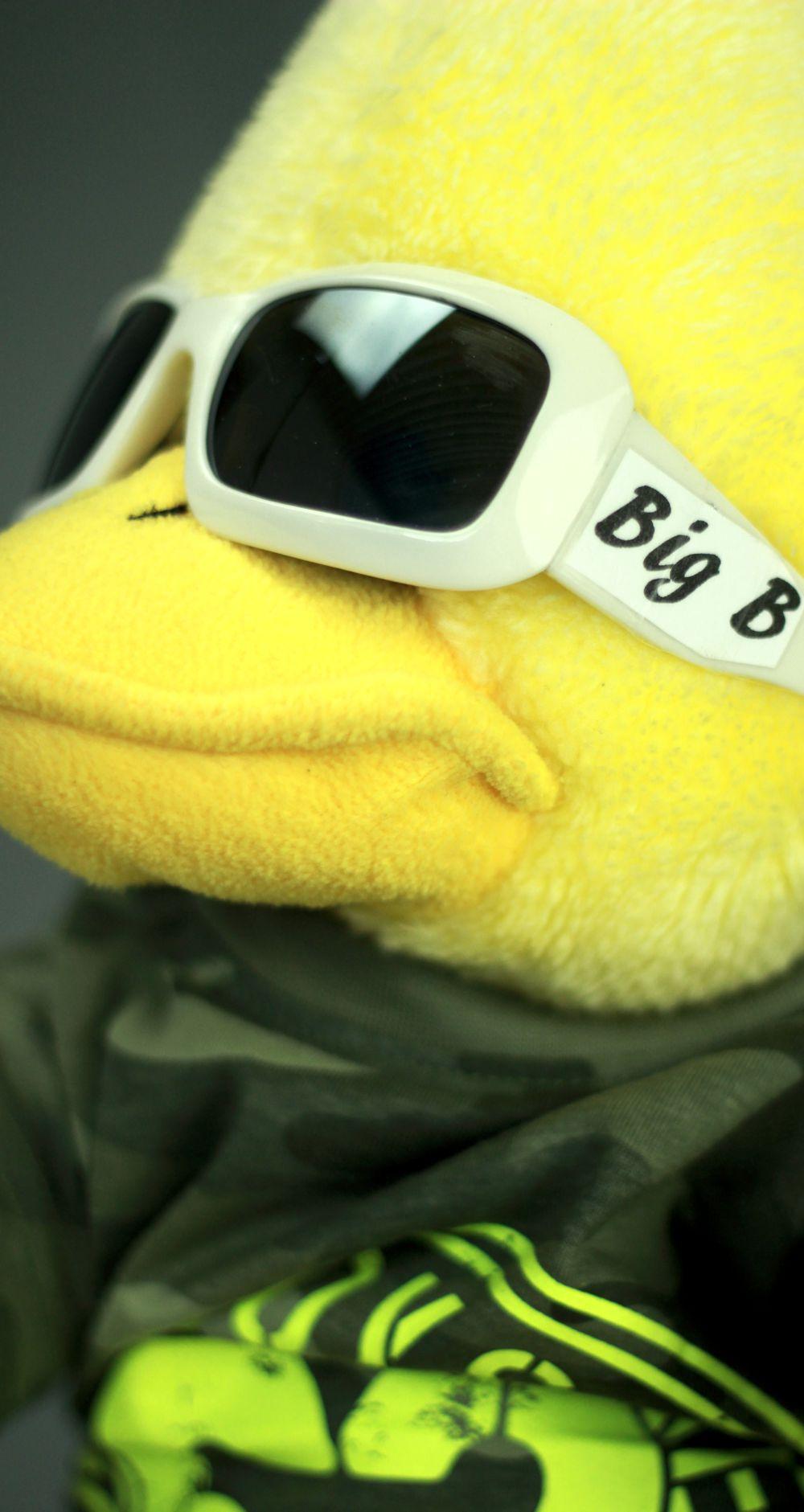 Wie aus dem einfachen gelben Erpel der coole BigB wurde.