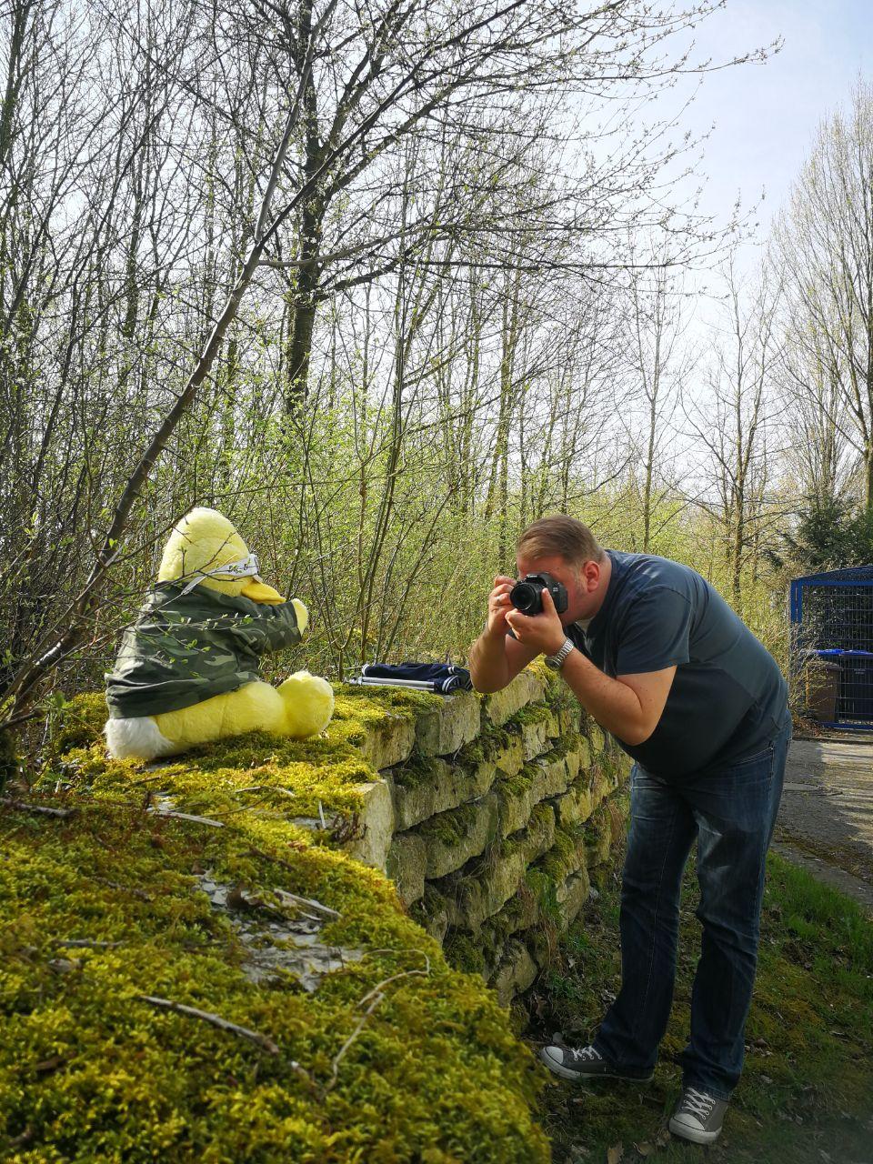 BigBird im Frühling - Bildmotive passend für die aktuelle Jahreszeit