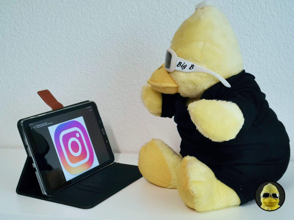 Wo bin ich gewesen und warum schickt Instagram den gelben Erpel in den Zwangsurlaub?